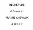 Recherche de  6 box et prairie avec paddock